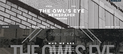 Owl's Eye News Website